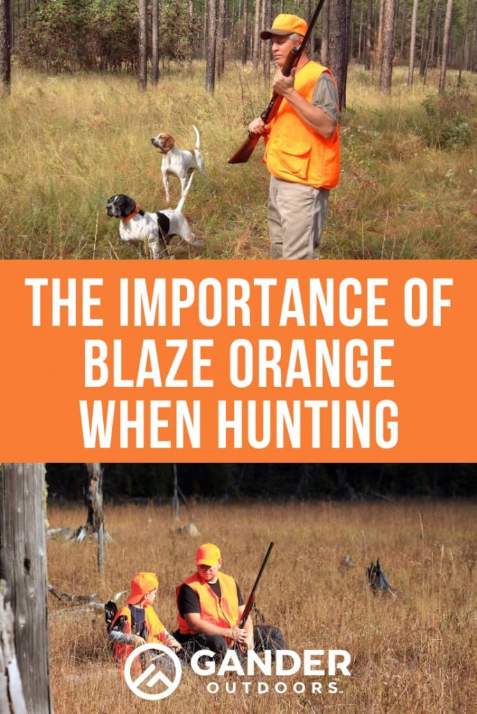 The importance of blaze orange when hunting