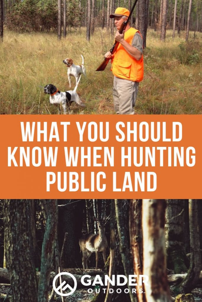 What you should know when hunting public land