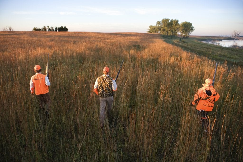 three guys hunting pheasant without a dog