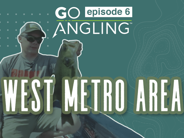 GO Angling: Episode 6 – Fishing Largemouth Bass With Swim Jigs