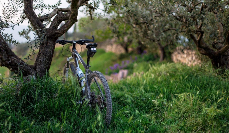 Beginner Mountain Bike Skills to Master
