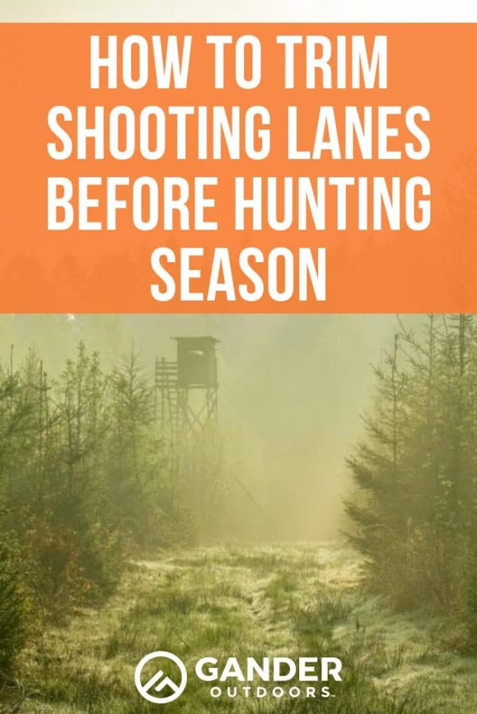How to trim shooting lanes before hunting season