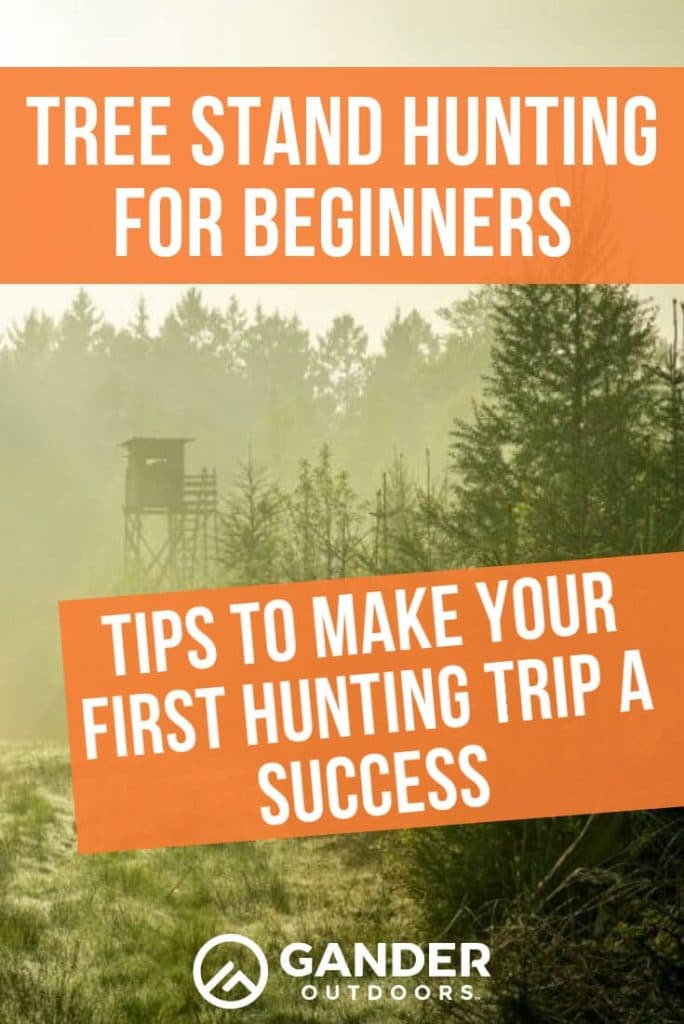 Tree stand hunting for beginners - tips to make your first hunting trip a success