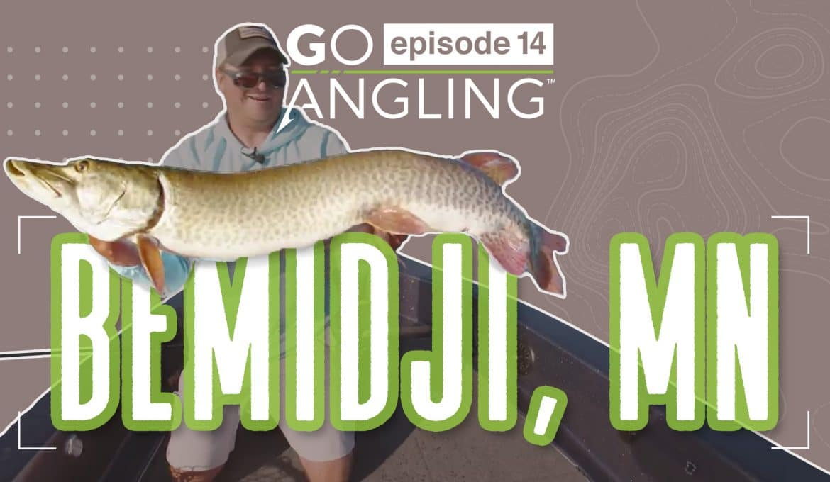 GO Angling: Episode 14 – Minnesota Muskies
