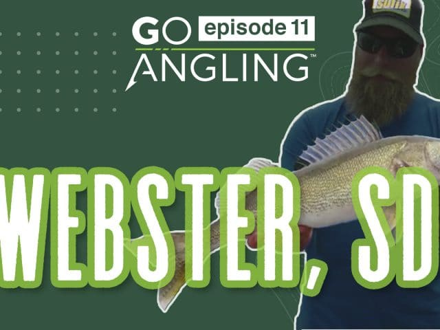 GO Angling: Episode 11 – Fishing for Weed Walleye