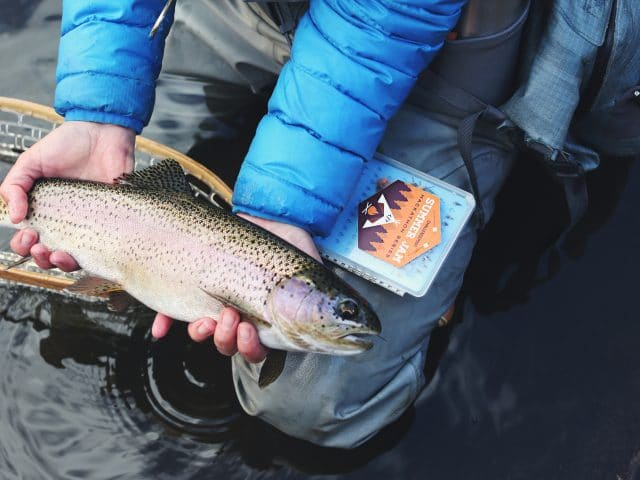 Five Tips for Fishing in the Sierras