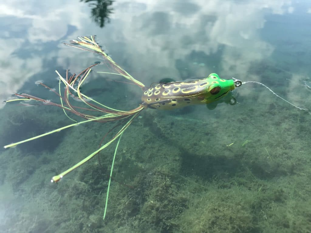 Green frog lure on lake with clouds