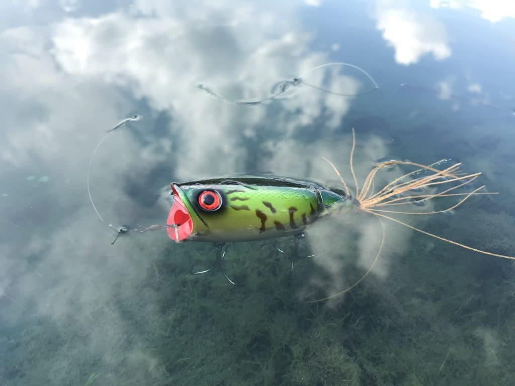 Popper lure on lake with clouds