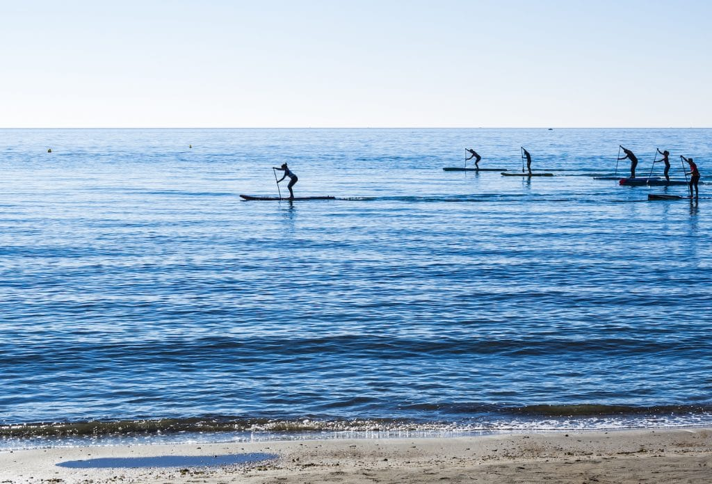 Paddleboards racing