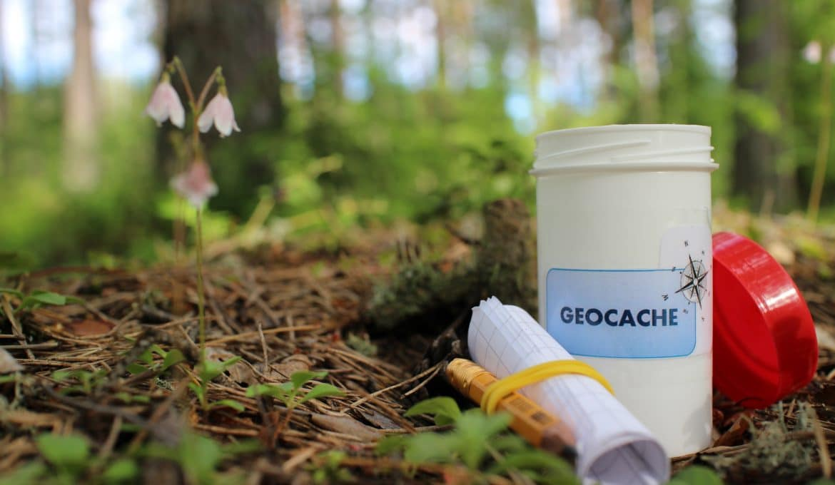 Geocache container in forest