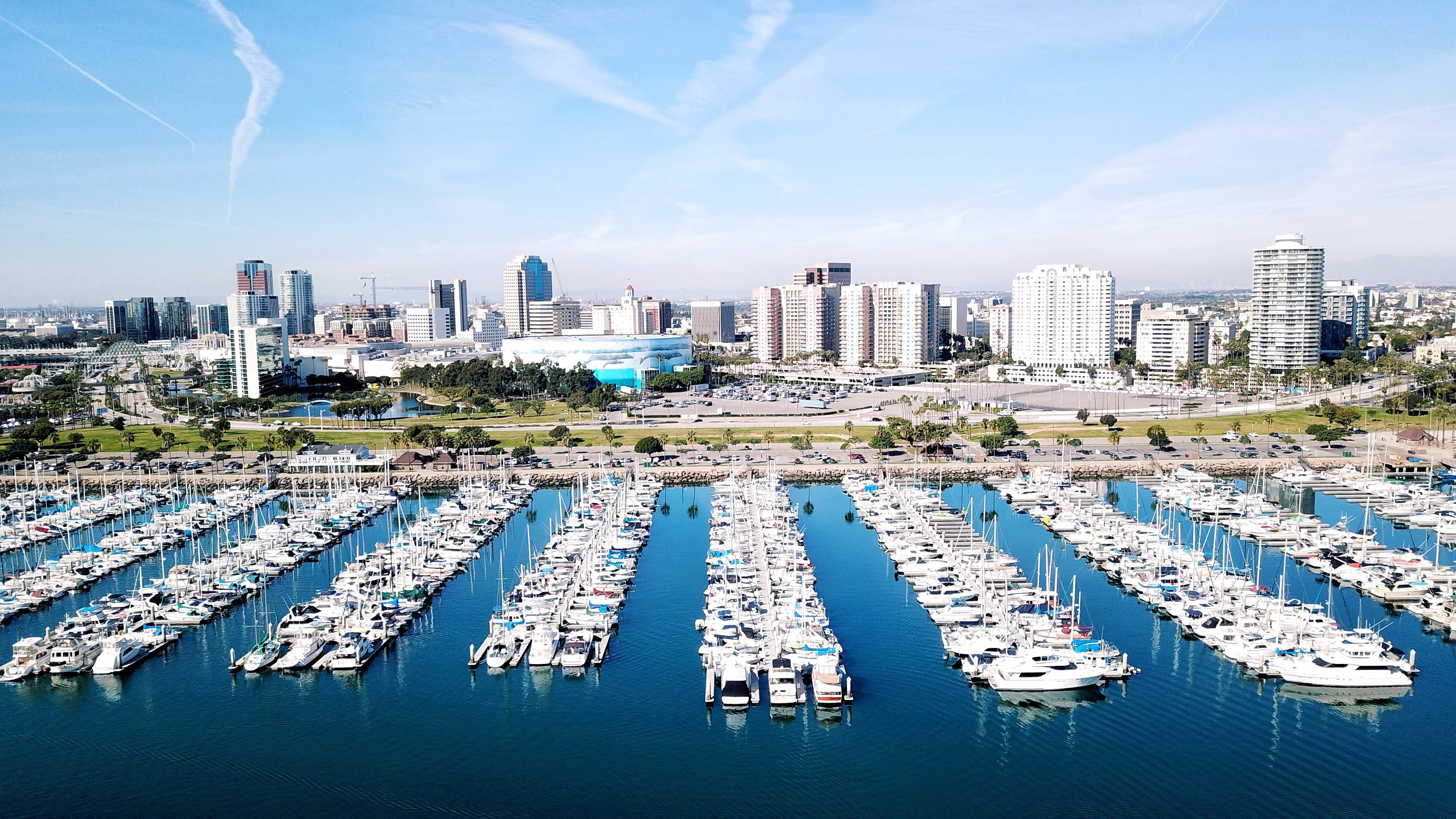 Marina with Skyscrapers