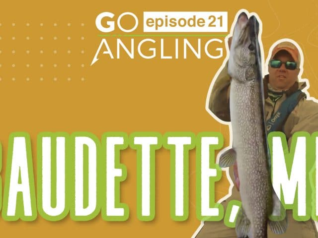Go Angling: Episode 21 – Blue Fox Spinner Bait for Pike in Ultra Shallow Water