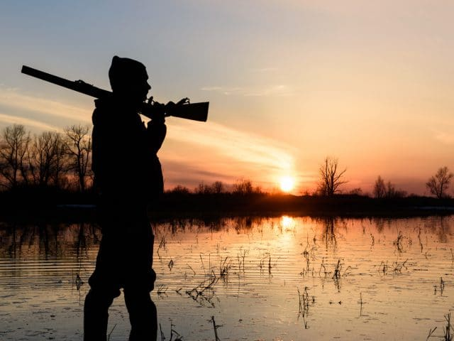 Choosing a Shotgun for Bird Season