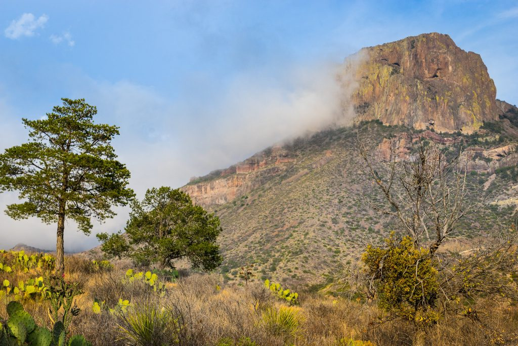 Fog in the Chisos Basin