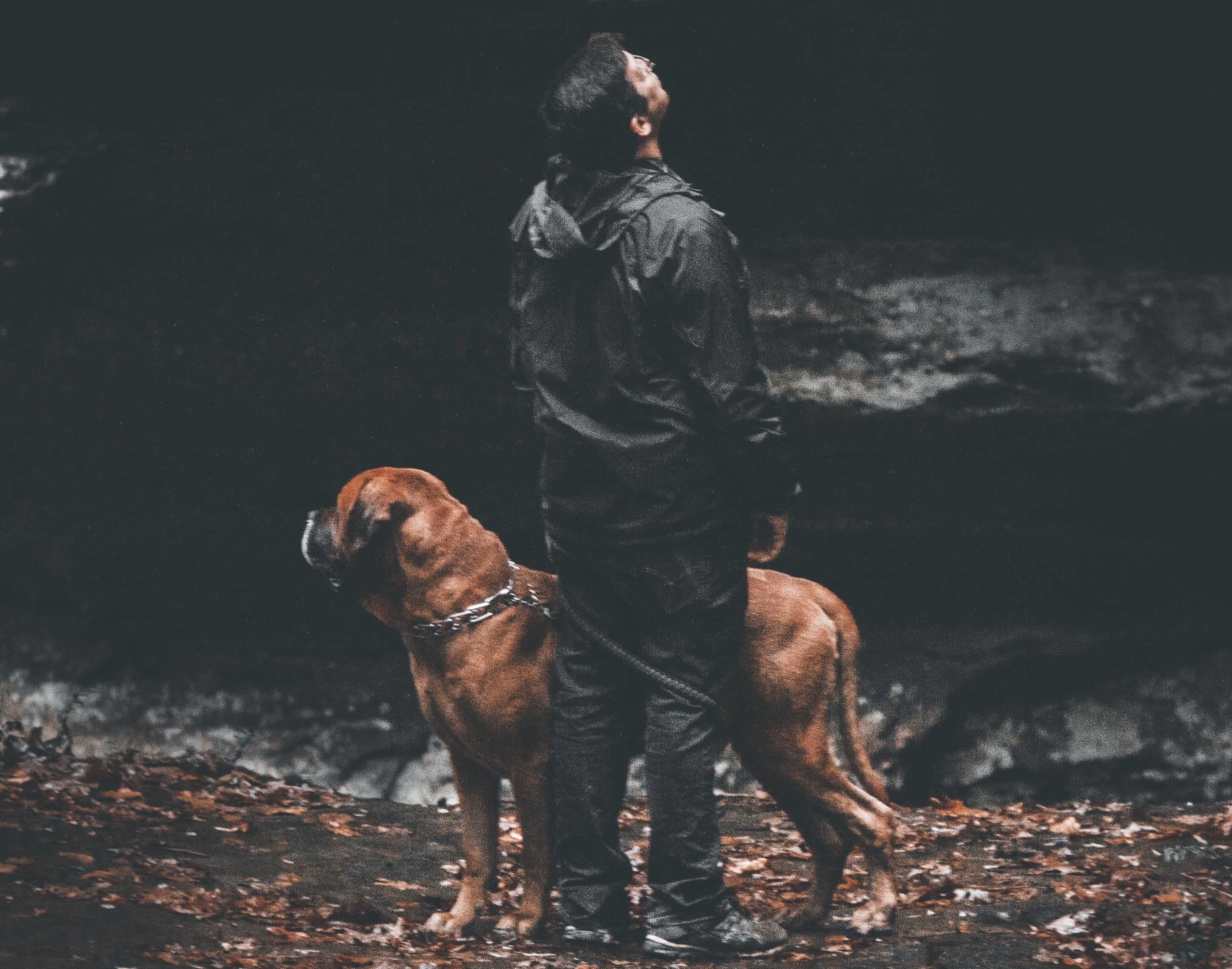 Man in Rain Gear with Dog