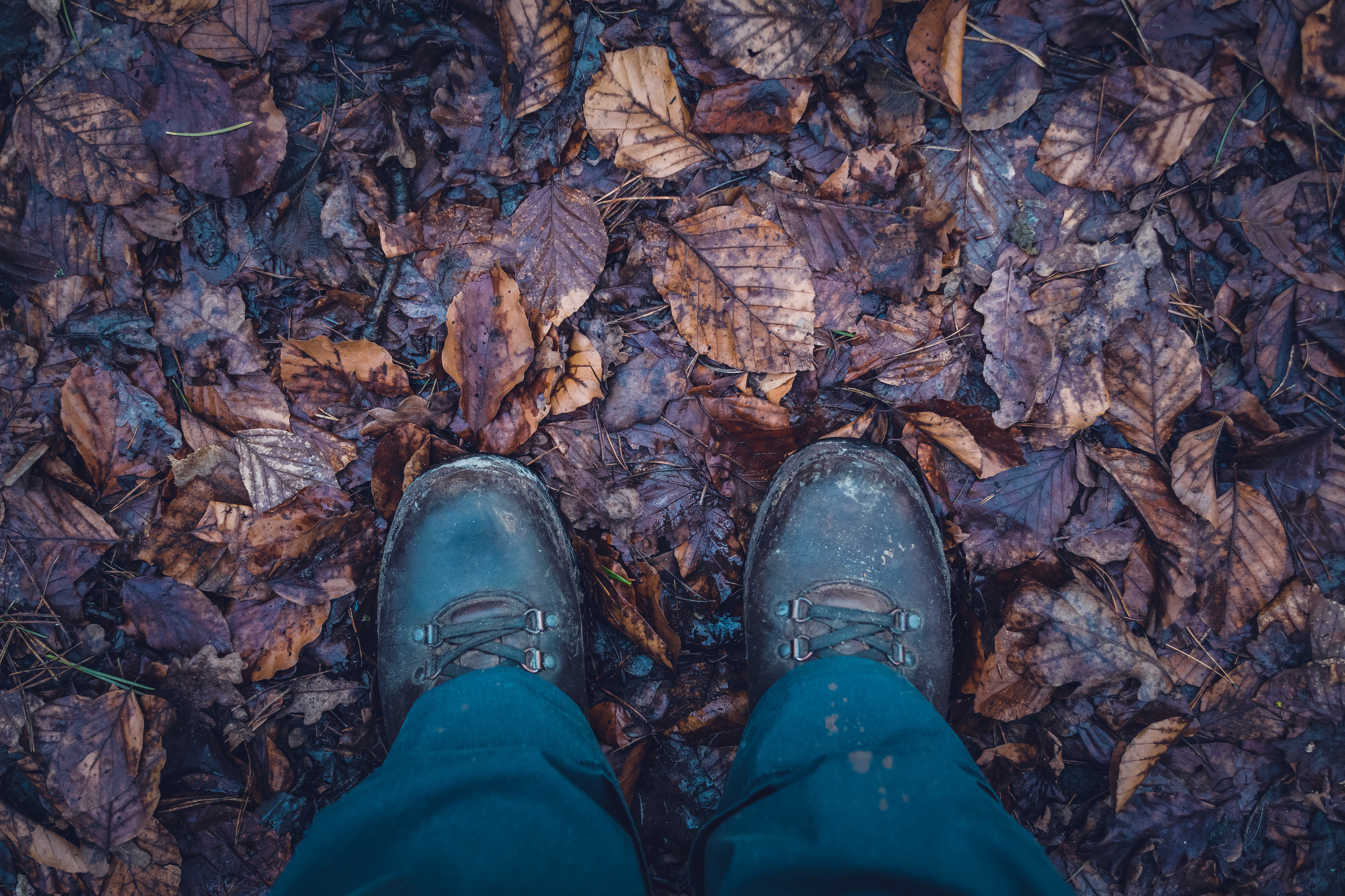 Brown Boots on Fall Leaves