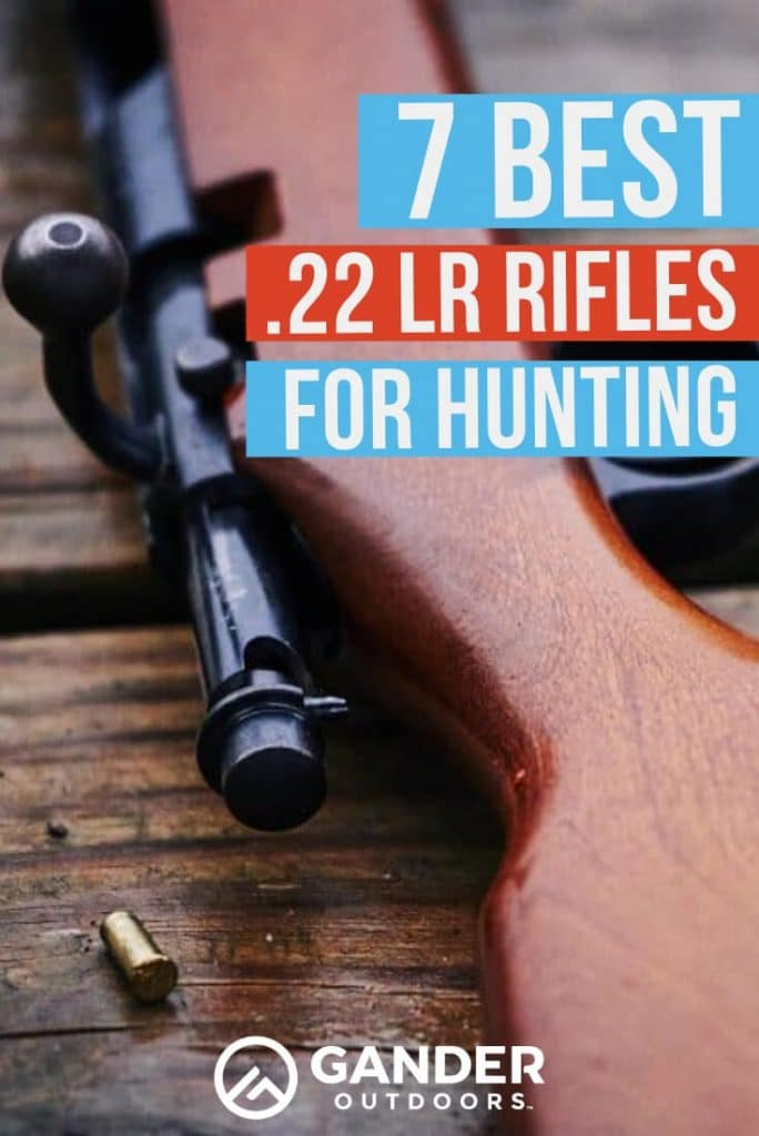 7 best .22 LR rifles for hunting