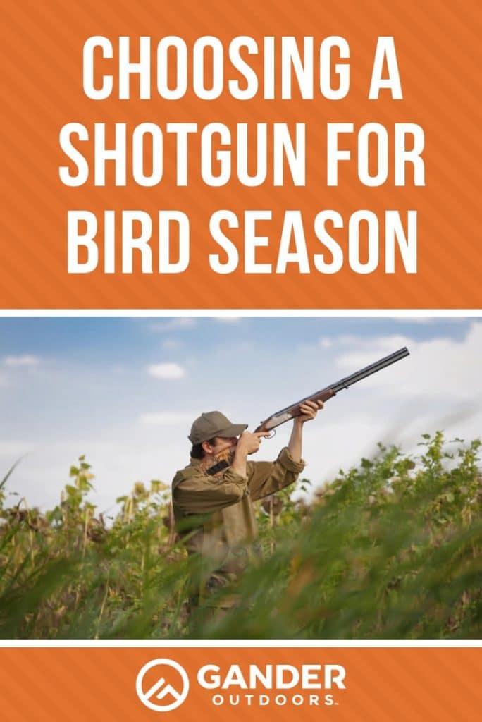 Choosing a shotgun for bird season