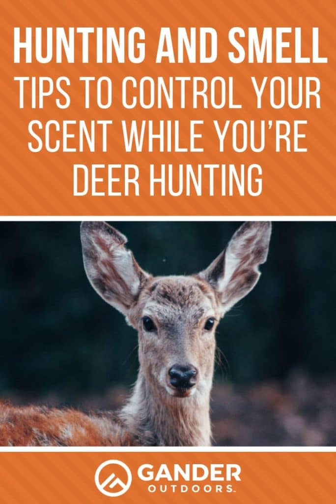 Tips to control your scent while you're deer hunting