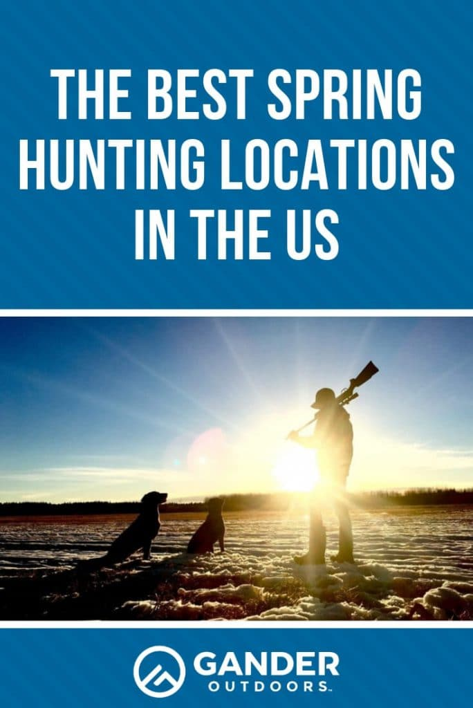 The best spring hunting locations in the US
