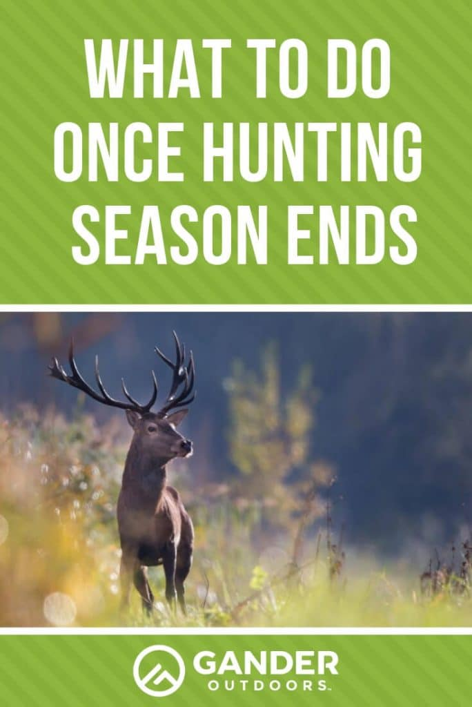 What to do once hunting season ends