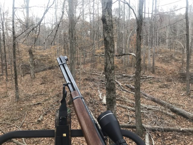 Deer hunting from tree stand in the woods with a rifle