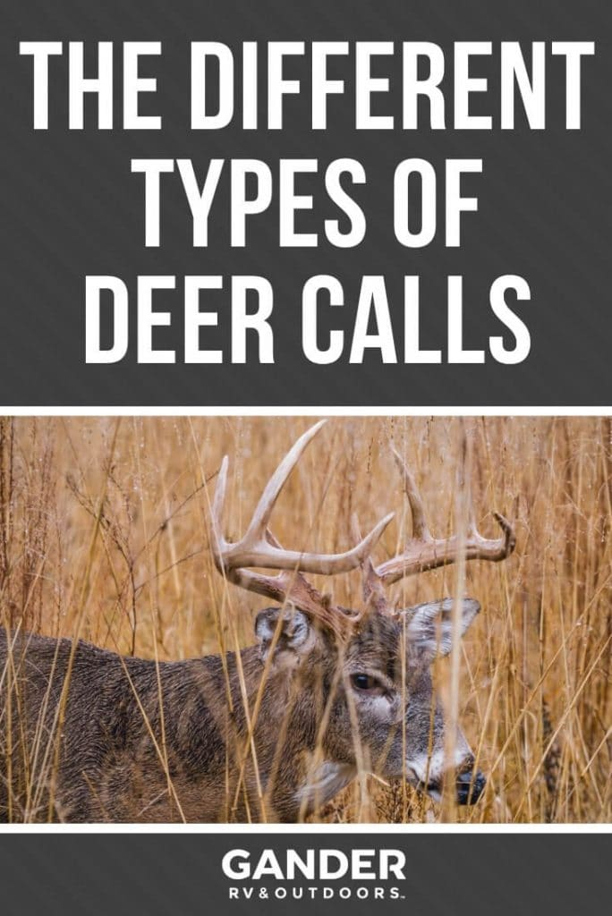 The different types of deer calls