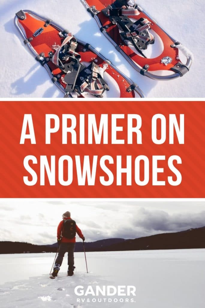 A primer on snowshoes