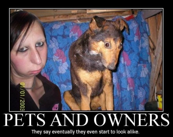pets_and_owners