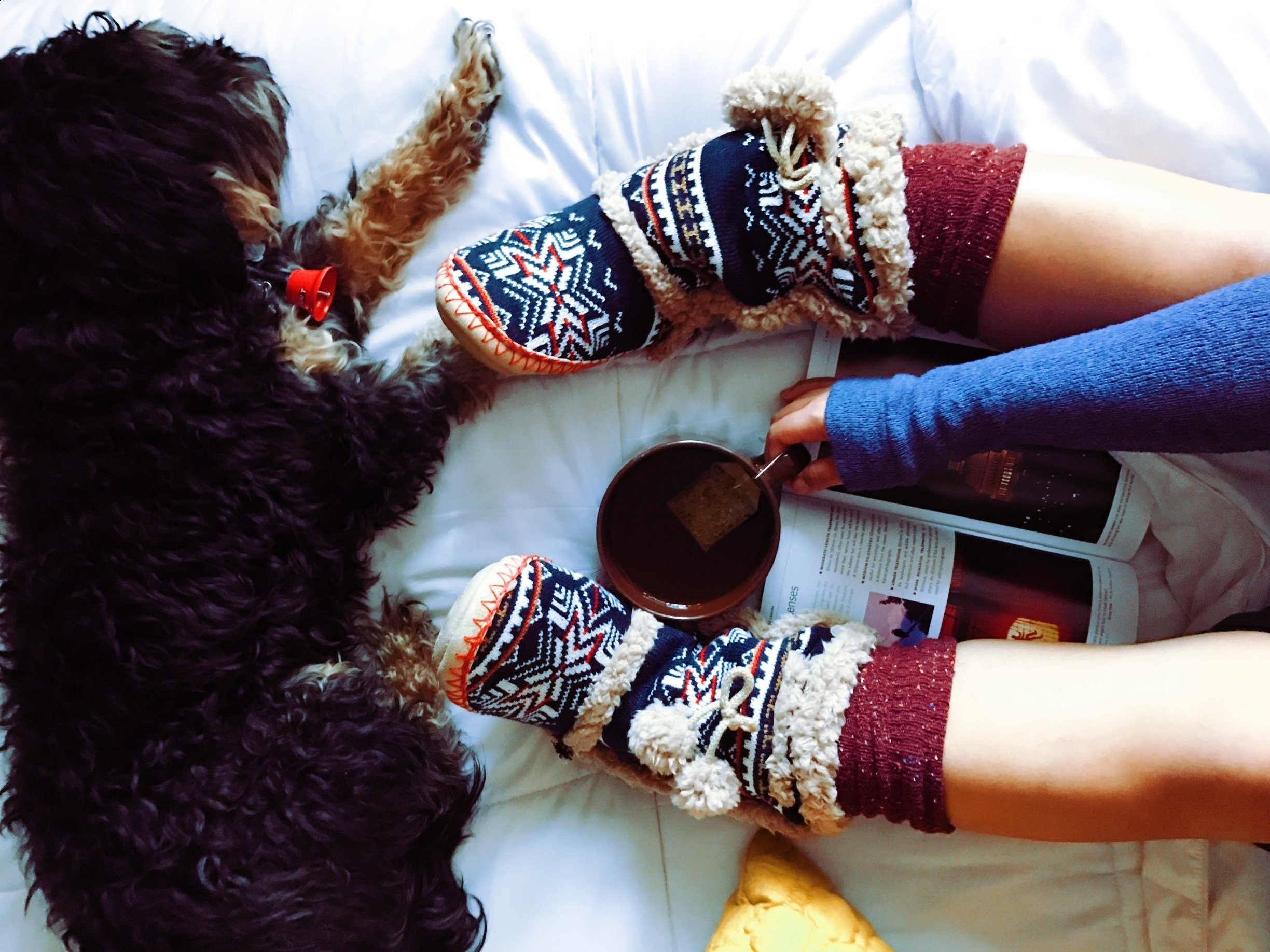 Dog and woman wearing boots in Fall