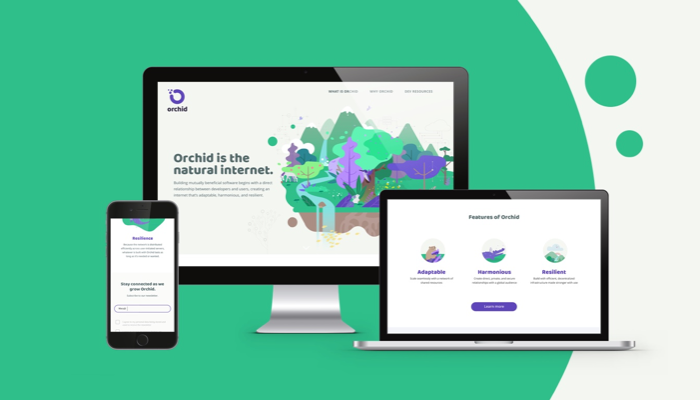 Orchid marketing website layout design, brand identity and strategy developed by frog
