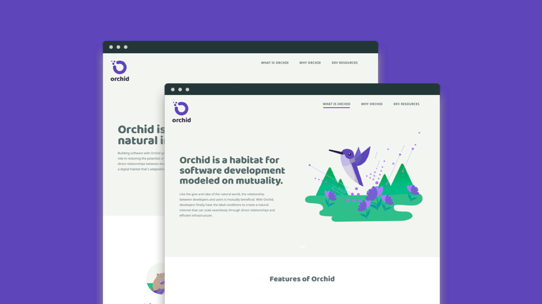 Orchid marketing website layout design