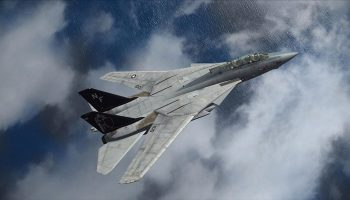 F14 Extended (16)