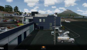 Horta Airport Tropicalsim (8)