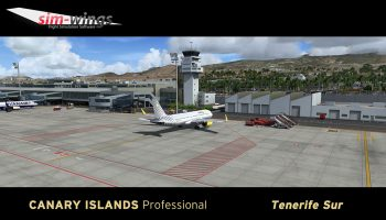 Canary Islands Prof Tenerife (11)