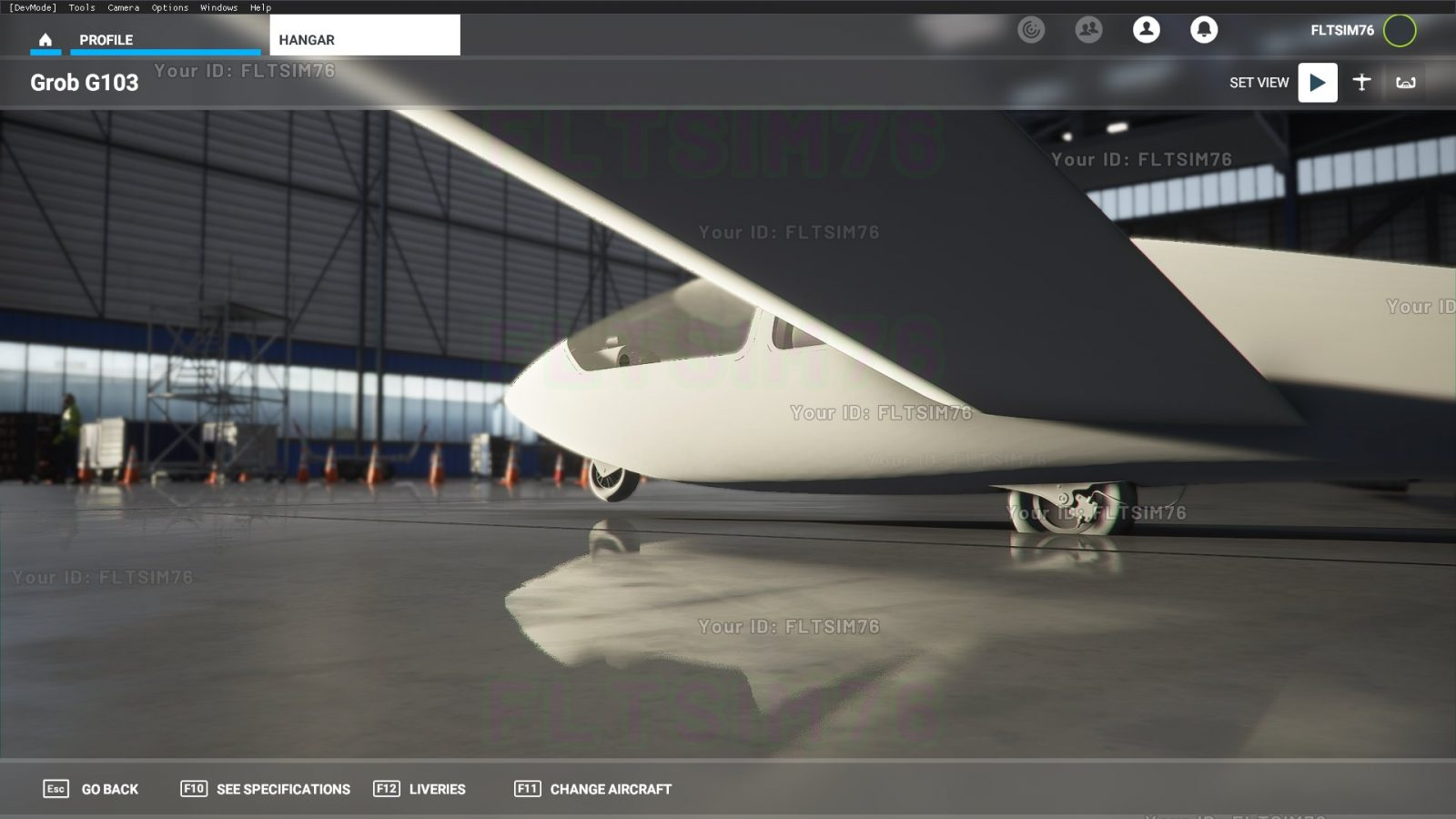 IRIS-Flight-Simulation-Microsoft-Flight-