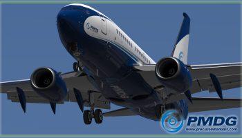 PMDG 737NGXu Bbj P3d (6)