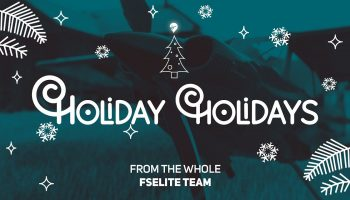 The FSElite Team Wishes You Happy Holidays