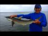 Snapshot 1 (5-13-2017 3-33 PM) Billy shark!.png