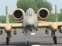 A-10-2.jpg