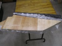 fins glassed 001.JPG
