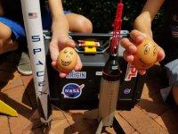 Eggstronauts Winston and Ronald.jpg