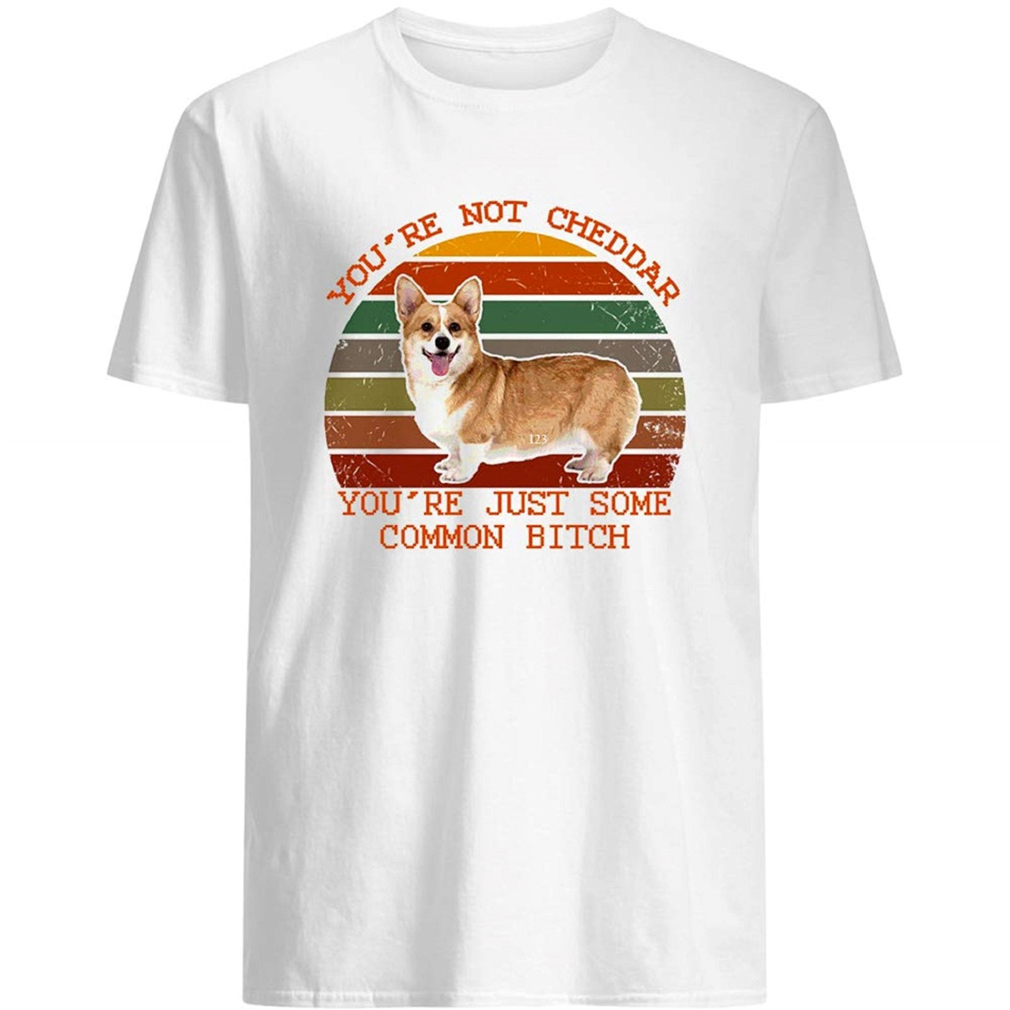 Corgi Cute Vintage Youre Not Cheddar Youre Just Some Common Gift Graphic Tee Gift For Female Women Tee T-shirt