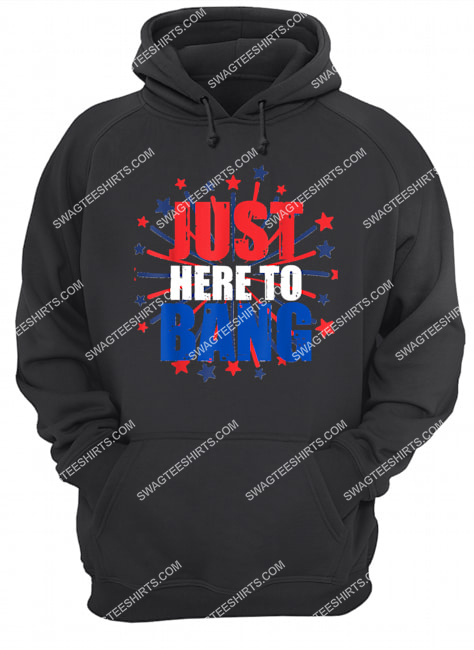 4th of july just here to bang novelty hoodie 1