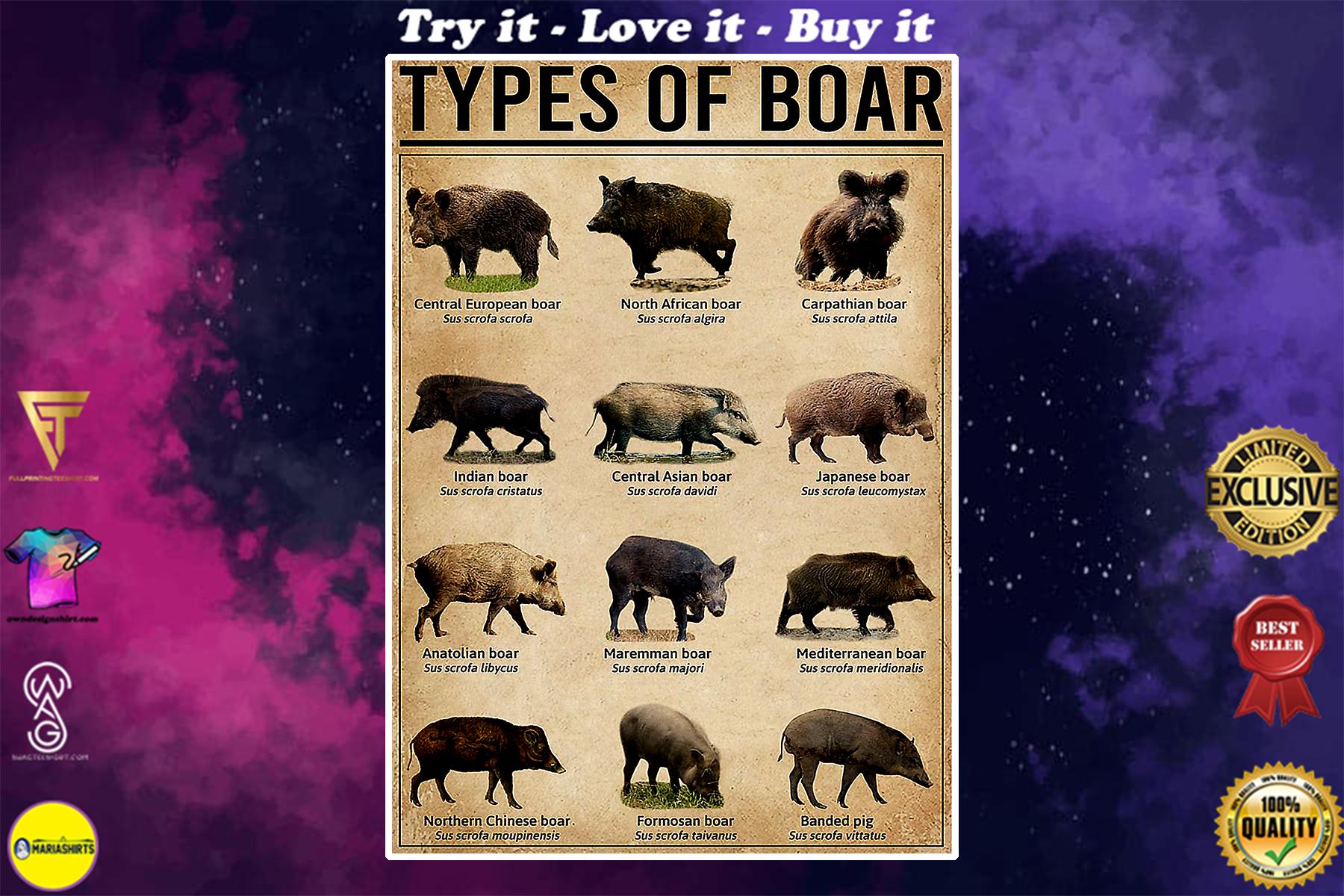 vintage types of boar poster