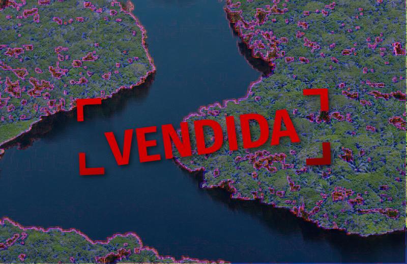"""O que você precisa saber sobre a """"privatização"""" da Amazônia"""