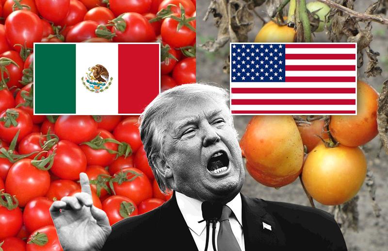 Para que servem, afinal, os tratados comerciais?