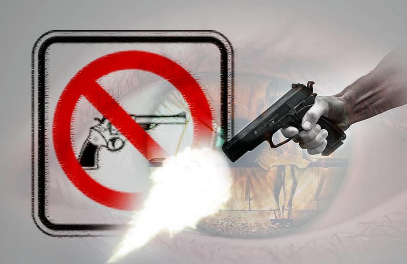 O que muitos políticos não entendem sobre o porte de armas