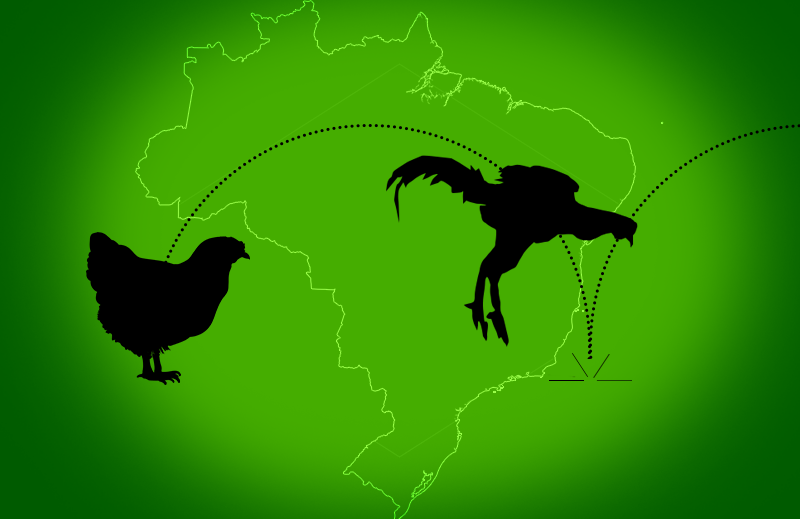 Crescimento da Economia Brasileira e as reformas em 2019