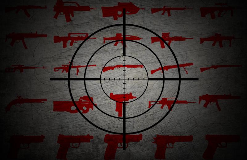 Como o Estatuto do Desarmamento prejudicou os Clubes de Caça e Tiro